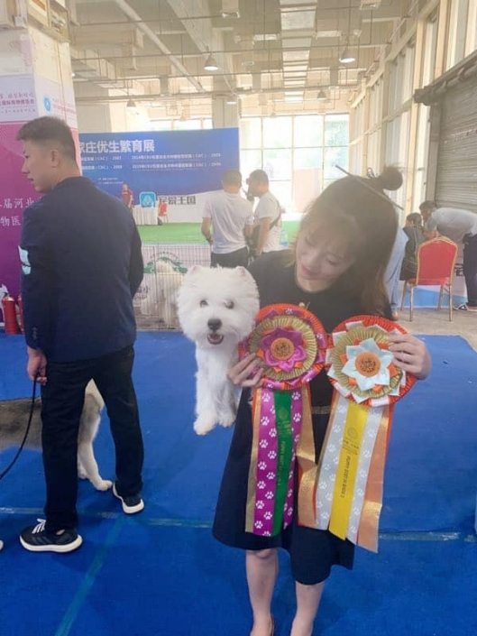 giovane-campione-cinese